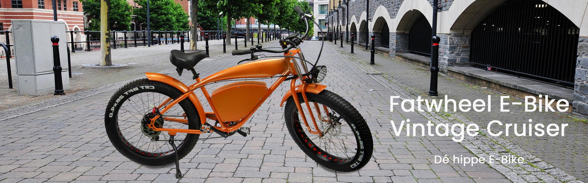 Fat Wheel Cruiser E-bike